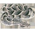 Viper image