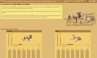 Lionzer - Organize a reproduction